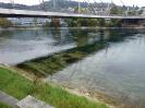 Flusstauchen_2